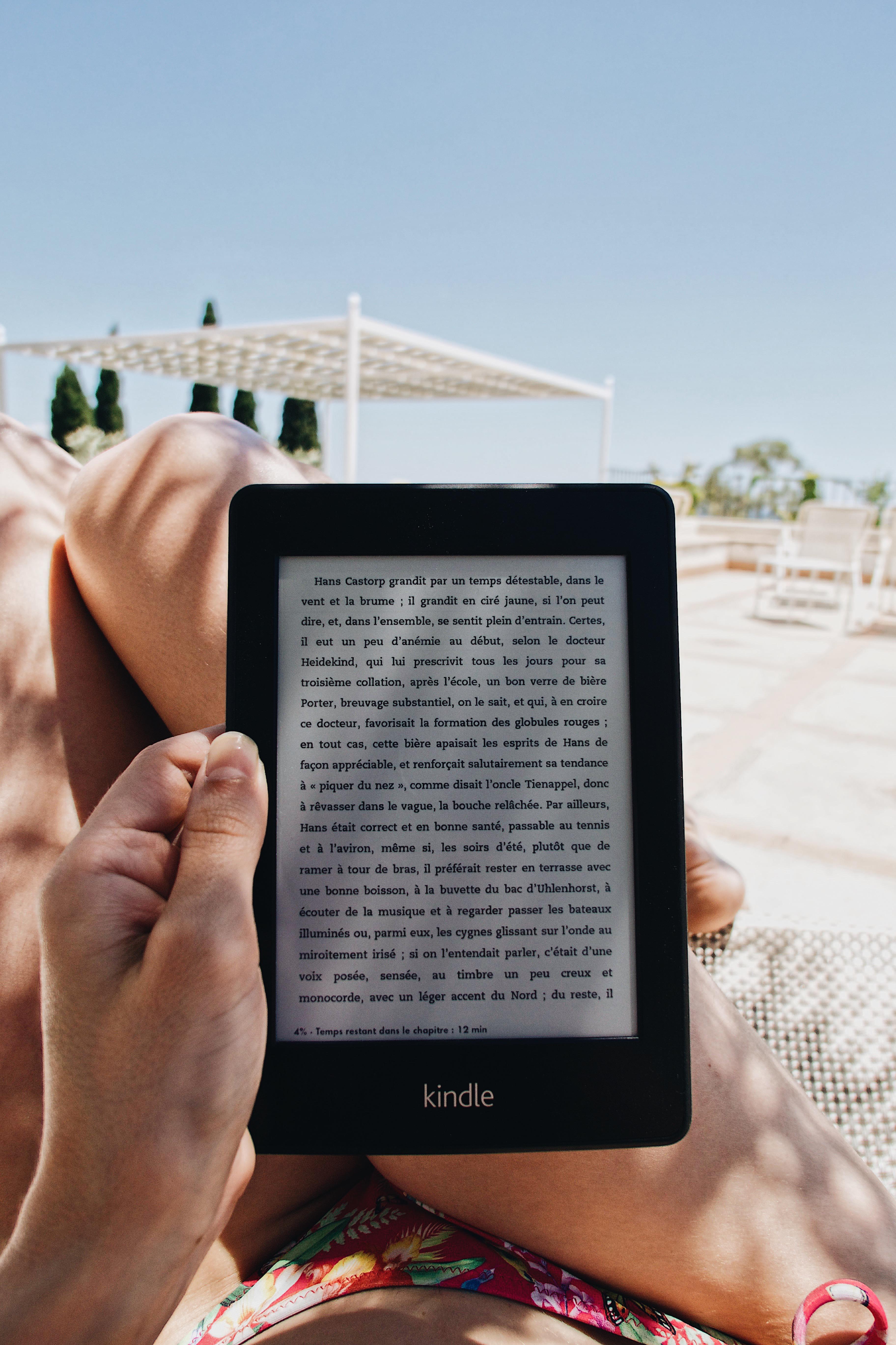 La Montagne Magique Kindle
