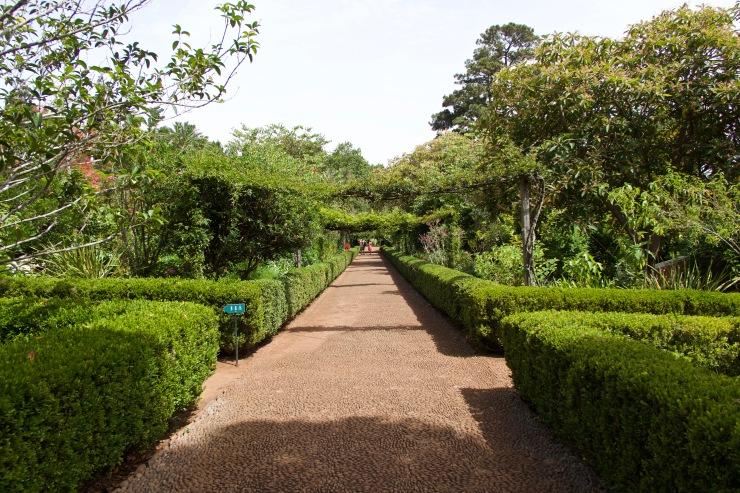 Jardin de la Casa Velha do Palheiro